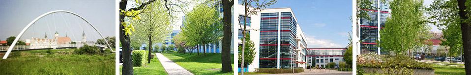 Jobcenter Dessau-Roßlau Titlebild